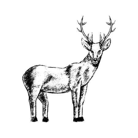 deer icon grunge style isolated on white background