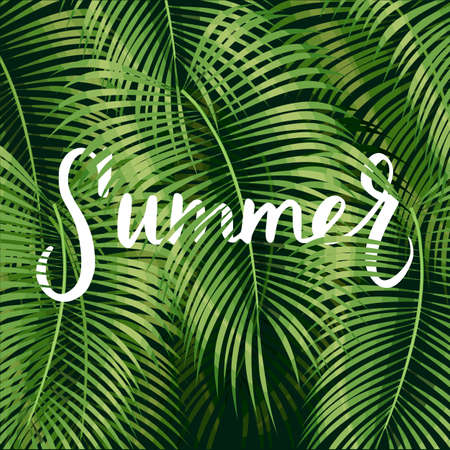 Beautiful summer pattern background with tropical palm leaves and lettering summer.