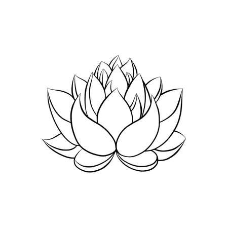 Flor de agua de lirio de loto en un estilo de grabado grabado en madera vintage Ilustración de vector