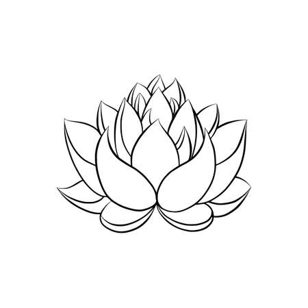 Lotus lily water flower in a vintage woodcut engraved etching style Zdjęcie Seryjne - 103302858