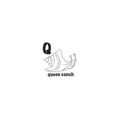 Queen conch coloring page isolated on white background