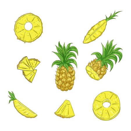 Pineapple, whole and sliced cartoon illustration set