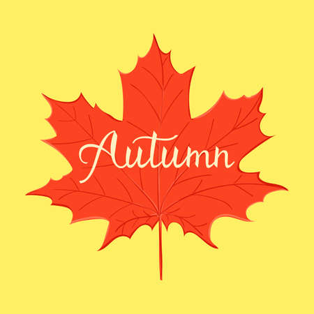 hand lettering Autumn greeting card design element with maple leaves Stockfoto - 127905028