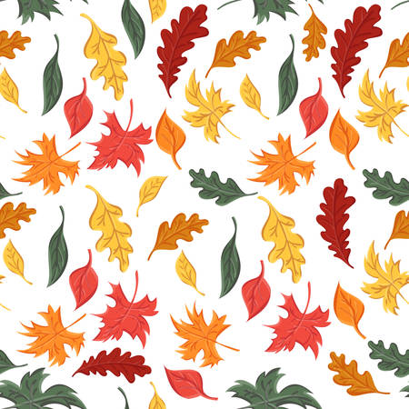 seamless pattern of autumn leaves of trees and oak and maple Stockfoto - 127905026