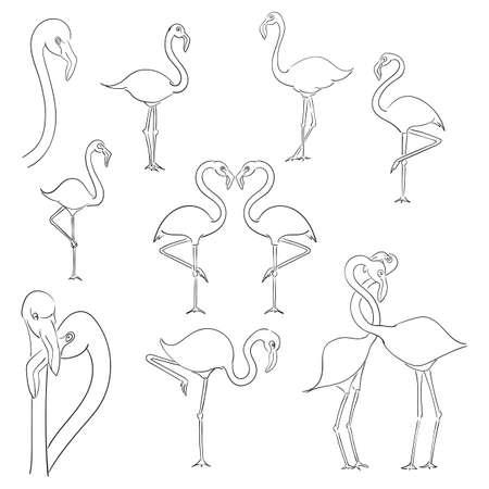 Flamingo vector illustration isolated on a white background. Stock Illustratie