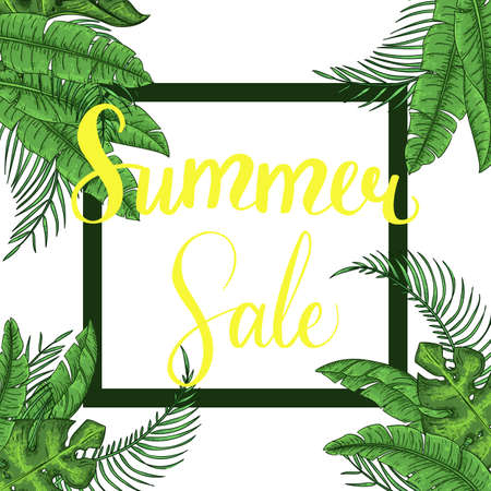 Summer Sale Lettering Jungle Tropical background with forest fern exotic palm leaves. Stockfoto - 127905051