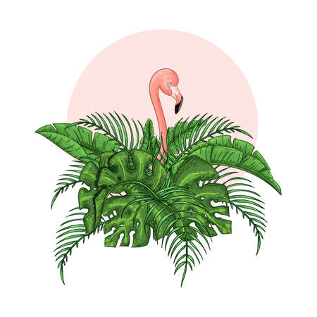 Beautiful floral exotic vector illustration with pink flamingo, tropical leaves.