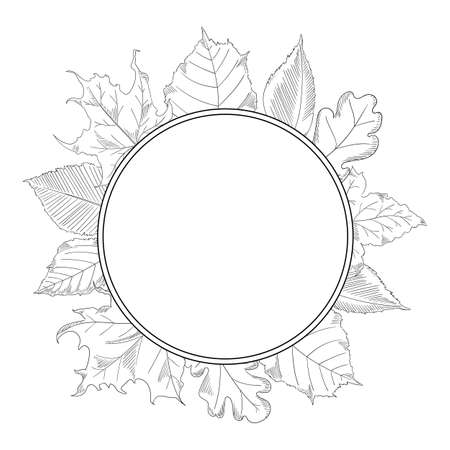 autumn leaves frame in a sketch style. Maple and Oak Stock Illustratie