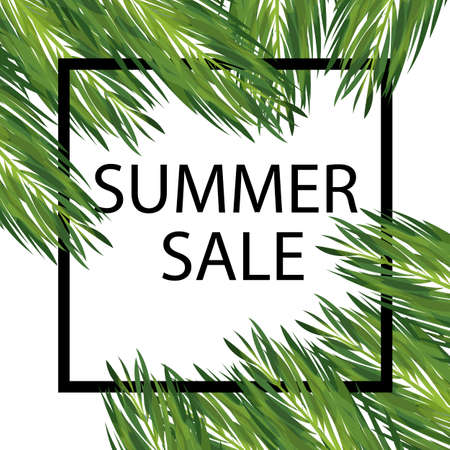 Summer seasonal sale vector template. Discount banner with palm leaves. Floral social media post with copyspace. Card with realistic palm leaves concept. Geometric frame on white background