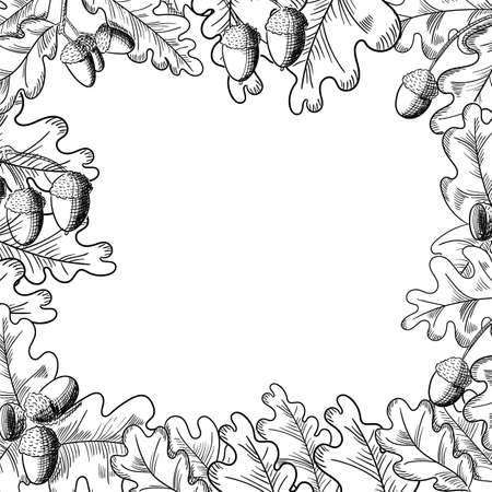 Vector oak leaf and acorn drawing frame. Autumn elements. Hand drawn detailed botanical illustration. Vintage fall seasonal decor. Stock Illustratie
