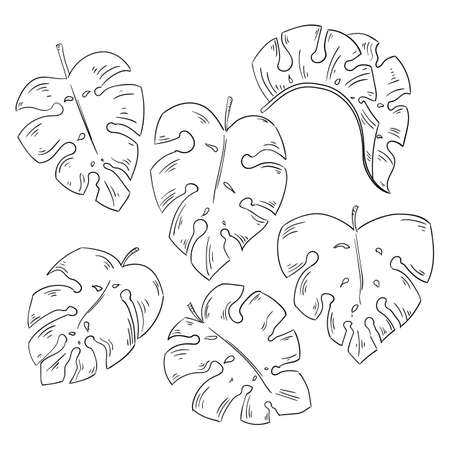 Tropical leaves collection isolated elements on the white background. Illustration
