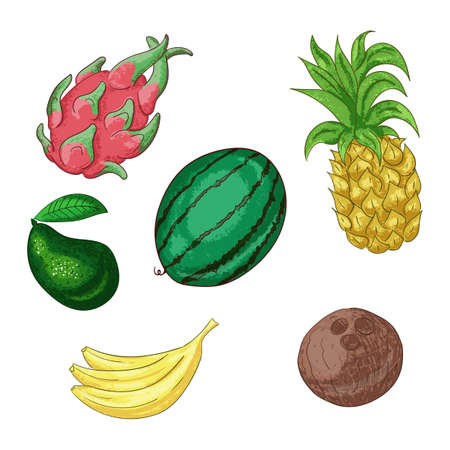 Tropical fruts, whole and sliced cartoon illustration set. Ilustracja