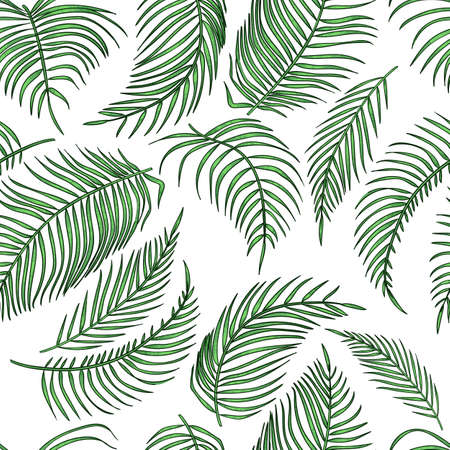 Vector palm leaves seamless pattern, jungle leaf on white background. Tropical botanical illustrations, green foliage, floral elements Stock Illustratie