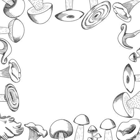 Mushroom hand drawn sketch frame. Mushroom shiitake, fresh organic food isolated on white. Ilustracja