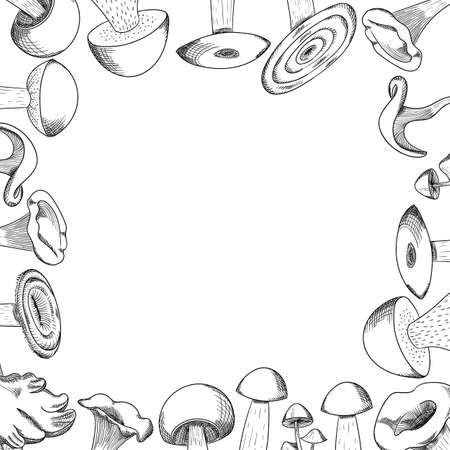 Mushroom hand drawn sketch frame. Mushroom shiitake, fresh organic food isolated on white. Illustration