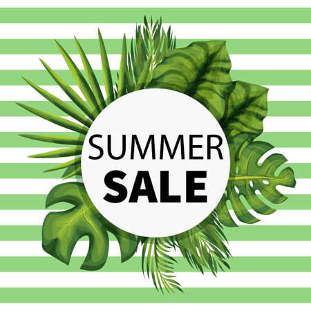 Summer seasonal sale template. Banner with exotic jungle plant. Illustration