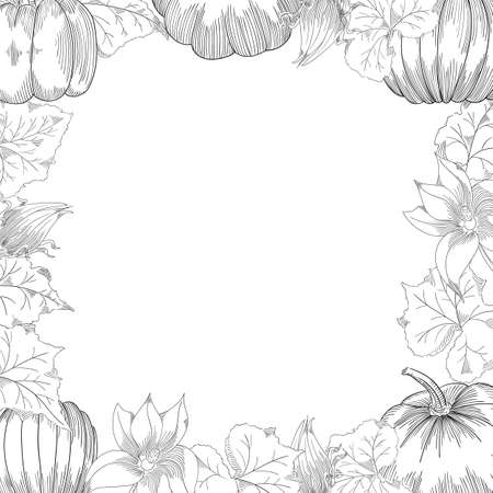 Pumpkin frame vector drawing set. Isolated hand drawn object with sliced and leaves. Vegetable engraved style illustration. Detailed vegetarian food sketch. Farm market product.