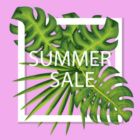 Summer discount template.Seasonal sale banner with fern and palm leaves.