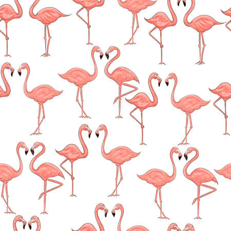 Cartoon pink flamingo seamless pattern on white background. Vector summer design