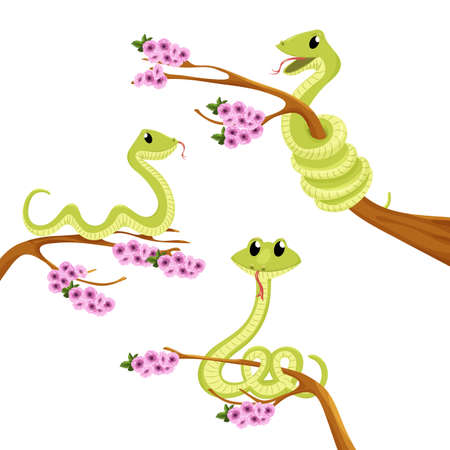 Cartoon cute green smiles snake vector animal illustration. Reptile iolated on white background.