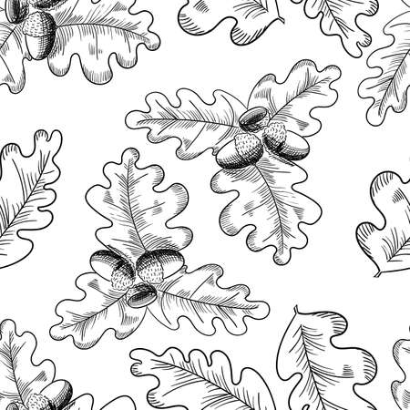 Vector oak leaf and acorn drawing seamless pattern. Autumn elements. Hand drawn detailed botanical illustration. Vintage fall seasonal decor. Illustration