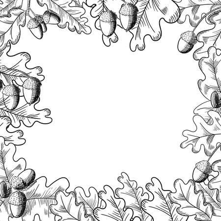 Vector oak leaf and acorn drawing frame. Autumn elements. Ilustração