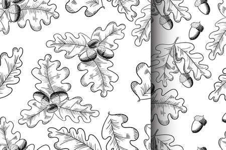 Vector oak leaf and acorn drawing seamless pattern set. Autumn elements.
