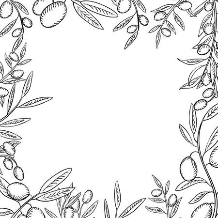 Olive branches with fruits outline frame. Olea europaea twigs linear botanical sketches. Healthy, balanced nutrition ingredient. Natural, organic farming produce. Olive oil source