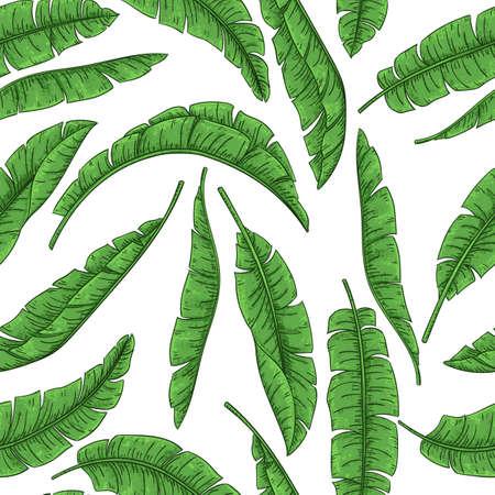 Tropical palm leaves seamless pattern, jungle banana
