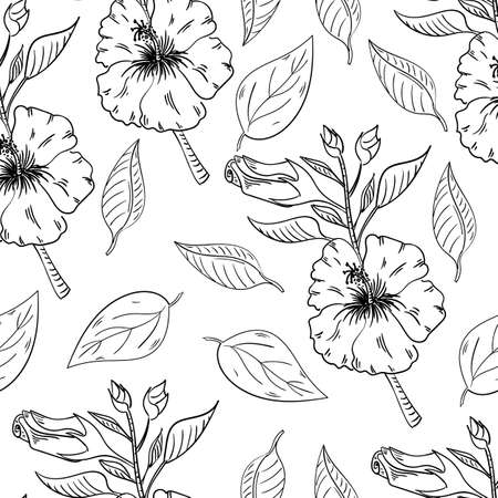Hibiscus flowers seamless pattern with leaves on white background.  イラスト・ベクター素材