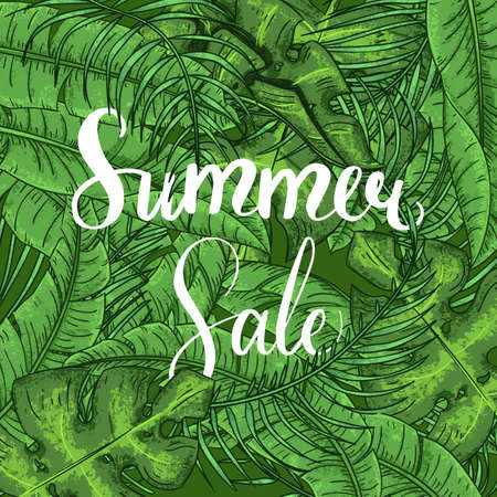 Summer Sale Lettering Jungle Tropical background with forest fern exotic palm leaves.