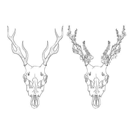 Deer skull with flowers. Vector element for tattoo sketch, printing on T-shirts. Illustration