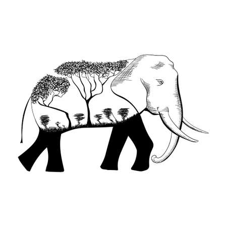 Elephant design wild nature concept africa in full growth, moving forward