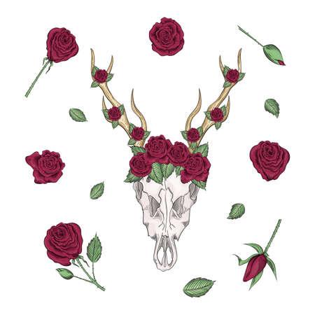 Bohemian vector western mystical deer skull, print rose flowers. Deer bohemian head, western vintage animal. bohemian hipster design print.