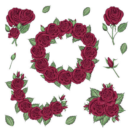 Hand drawn set of roses, rose buds and wreath on white background. Ilustracja