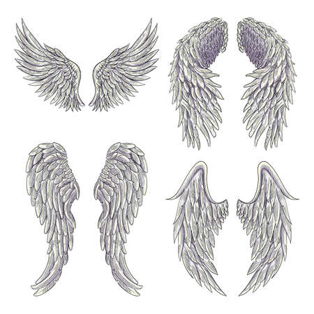 Heraldic wings set for tattoo or mascot design. isolated on white background Ilustracja