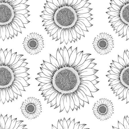 Sunflower seamless pattern. Hand drawn illustration. Food ingredient vintage sketch.