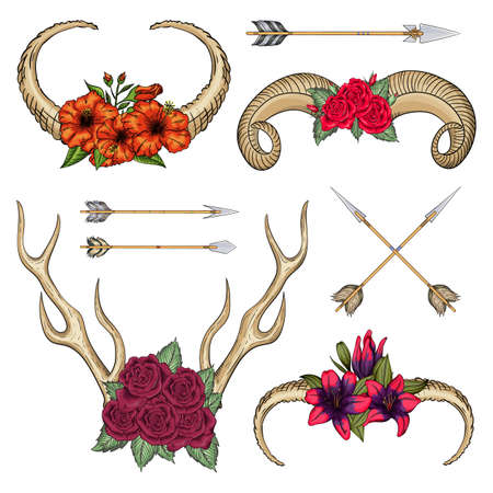 Collection of horns of wild animals with flowers and arrows swestern mystical bohemian