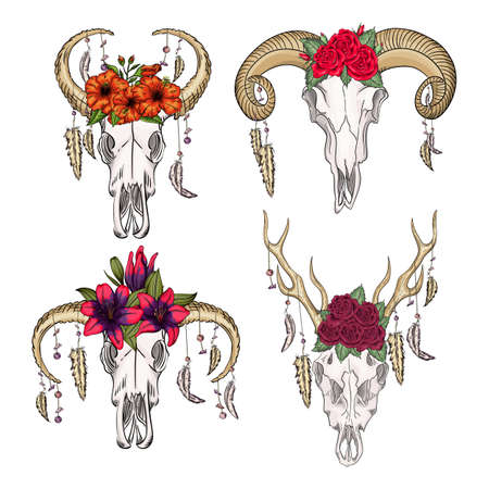 Collection of skulls of wild animals with feathers and flowers swestern mystical. bohemian head, western vintage animal.