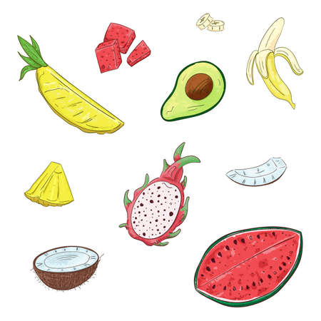 Tropical fruits set. Vector isolated elements on the white background. Illustration