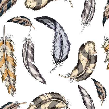 Vector colorful seamless pattern feathers bird on a white background.