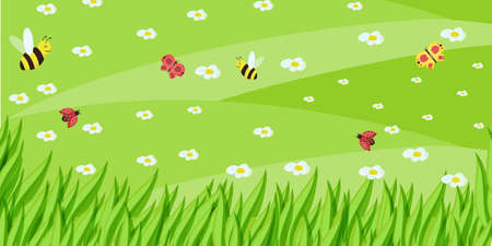 Spring or summer nature background with green grass, flowers and butterflies and bird 向量圖像
