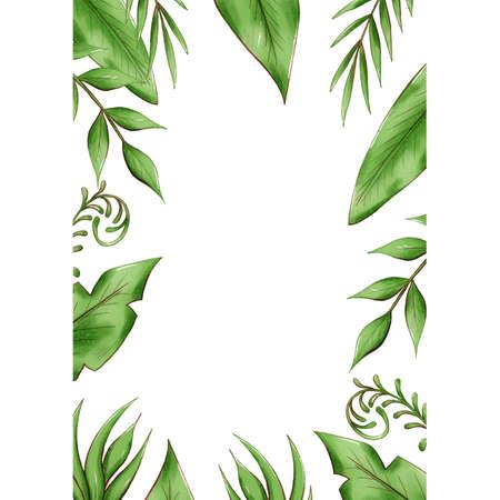 exotic tropical leaves frame, jungle foliage set isolated on white background.