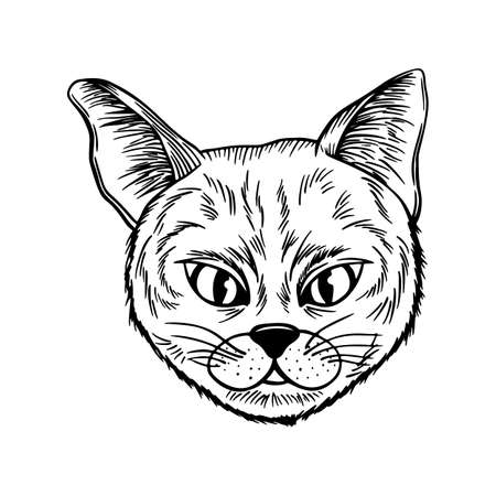 cat spotted striped head symmetrical sketch vector graphics black and white drawing 向量圖像