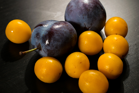 Ripe wet plums and cherry plums on a dark table