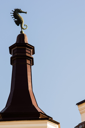 weather vane on the roof of the old tower