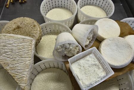 assortments of italian fresh cheeses in italian farm photo