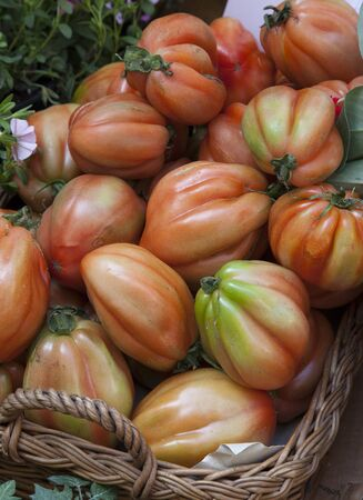 bue: italian quality of tomato called cuore di bue