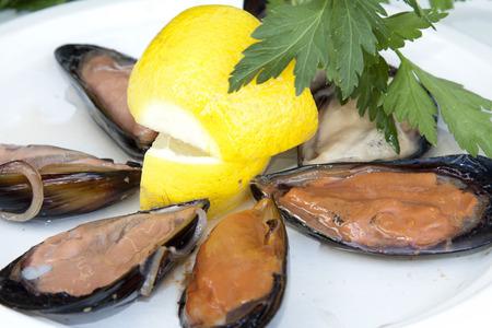 italian sea: cozze, mussels of italian sea cooked and raw Stock Photo