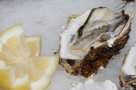 70 s: natural oysters on a bed of ice with lemon